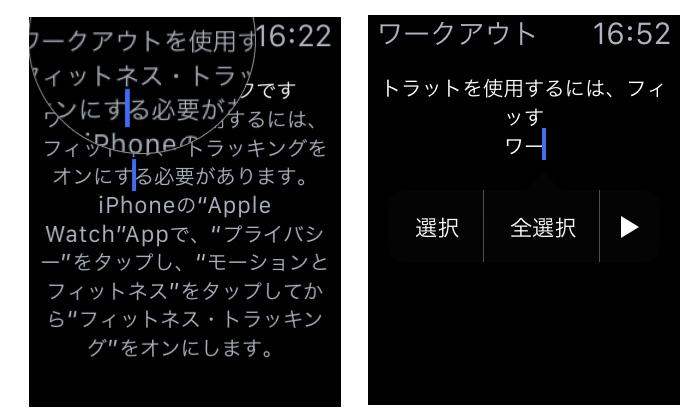 apple_watch_hidden_copy_paste_1